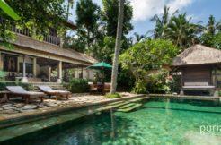 Villa ria sayan - Pool and Villa