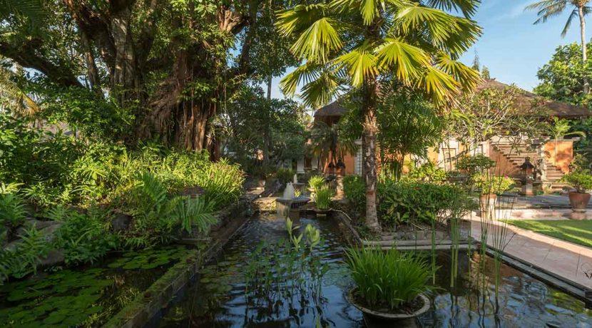 8.-Villa-Batujimbar---Entrance-water-garden-at-dawn