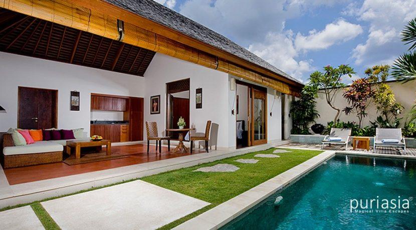 Villa Arjuna  - The Villa