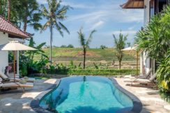 Villa Damai - Pool