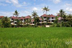 Villa Damai - Ricefield View
