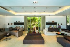 One Waterfall Bay Villa - Living and entertaining area