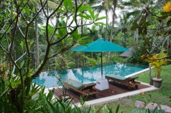 Villa Samaki - Three Bedrooms Villa in Ubud